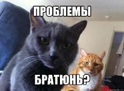 sw_1424783689__vilet.jpg