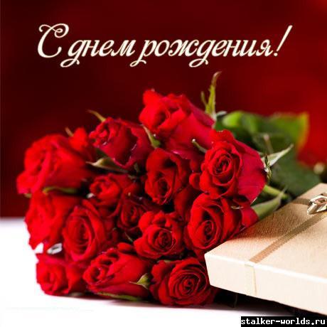 sw_1469902754__12.jpg
