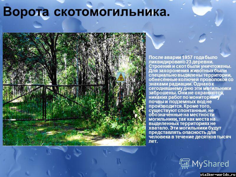 sw_1495566502__0440938001491157197.jpg