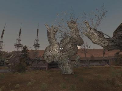 Тайник на дереве (Радар).jpg
